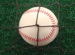 dyneema professional grade backstop netting